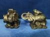 Слон с трехлапой жабой